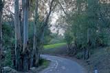 780 Toro Canyon Road - Photo 1