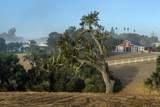 1599 Refugio Road - Photo 8