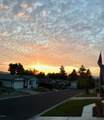 965 White Dove Drive - Photo 23