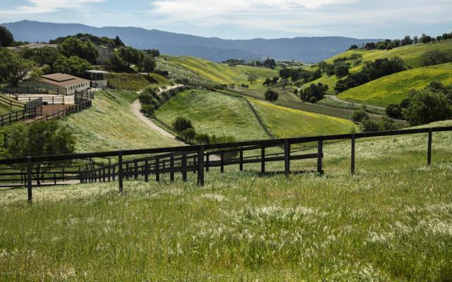 0 Ballard Canyon, Los Olivos, CA 93441 (MLS #1700718) :: The Epstein Partners