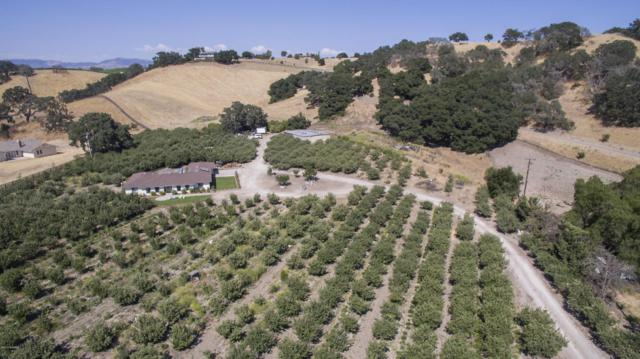 1226 Alamo Pintado Road, Solvang, CA 93463 (MLS #1700861) :: The Epstein Partners