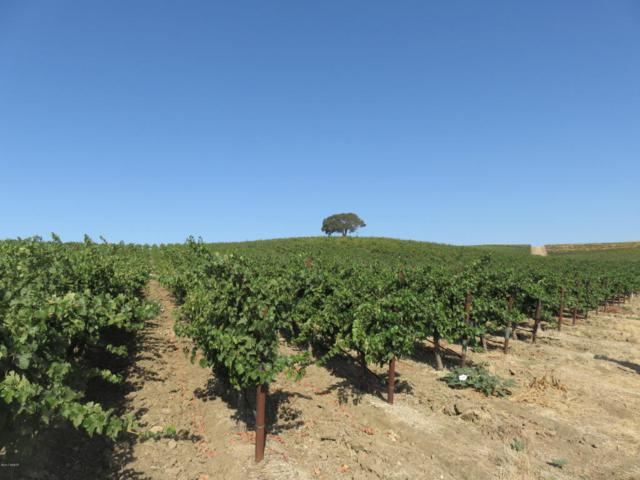 1172 San Marcos Road, Paso Robles, CA 93446 (MLS #1701717) :: The Epstein Partners