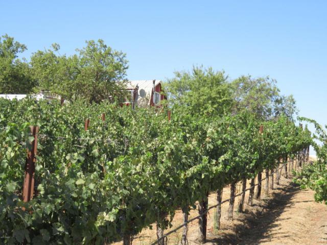 5805 Vista Serrano Way, Paso Robles, CA 93446 (MLS #1701718) :: The Epstein Partners
