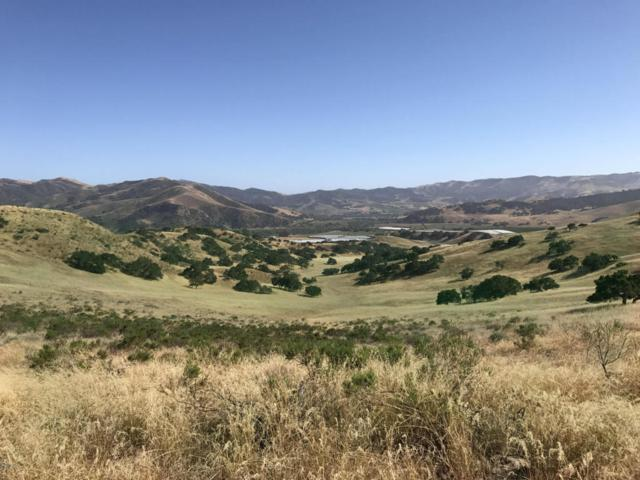 7901 Old Careaga Ranch Road, Los Alamos, CA 93440 (MLS #1702207) :: The Epstein Partners