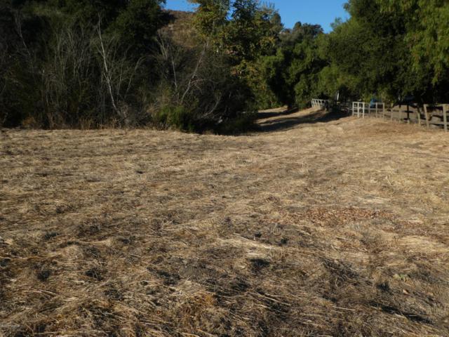2213 Keenan Road, Los Olivos, CA 93441 (MLS #1702427) :: The Epstein Partners