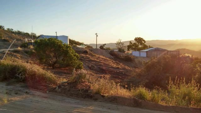 4170 Stagecoach Canyon Road, Santa Margarita, CA 93453 (MLS #18000793) :: The Epstein Partners