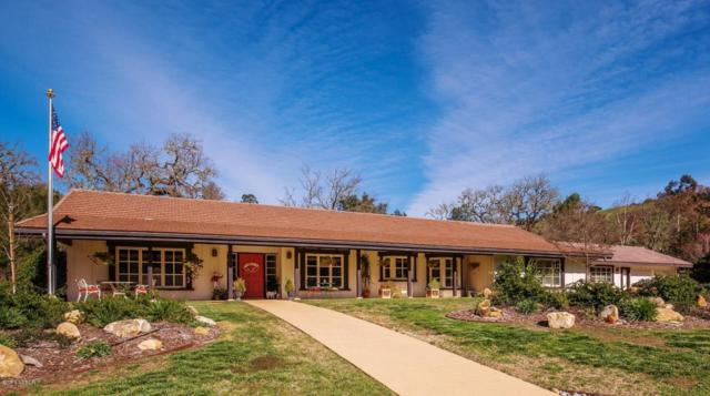 3020 Buttonhook, Solvang, CA 93463 (MLS #18000821) :: The Epstein Partners