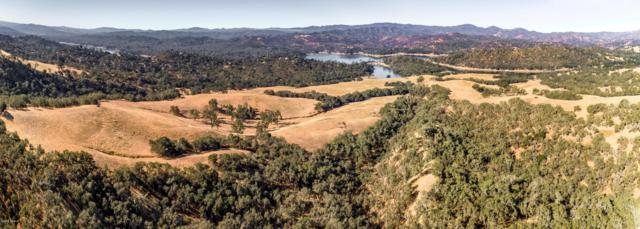 Oak Shores Drive, Paso Robles, CA 93446 (MLS #18000936) :: The Epstein Partners
