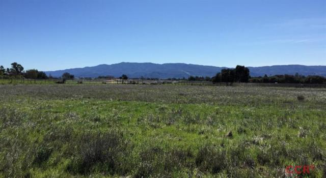 2905 Bramadero Road, Los Olivos, CA 93441 (MLS #18001518) :: The Epstein Partners