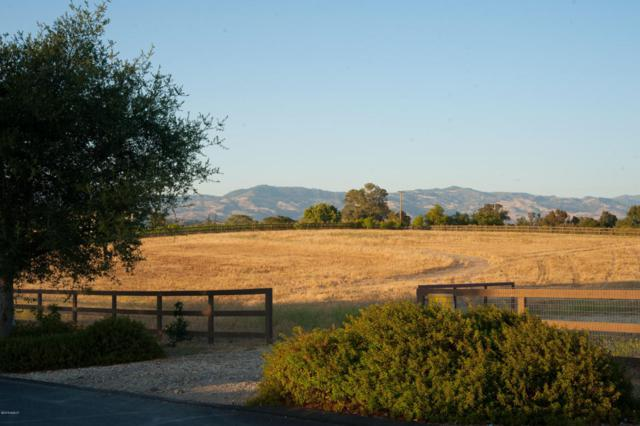 1776 Still Meadow Road, Solvang, CA 93463 (MLS #18002099) :: The Epstein Partners