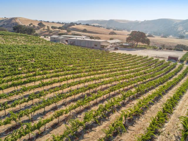 3439 Ranchita Canyon Road, San Miguel, CA 93451 (MLS #18003058) :: The Epstein Partners