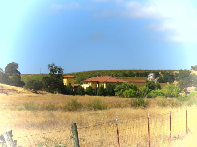 1172 San Marcos Road, Paso Robles, CA 93446 (MLS #19000141) :: The Epstein Partners