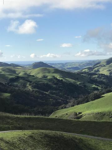 Address Not Published, Cambria, CA 93428 (MLS #19000327) :: The Epstein Partners