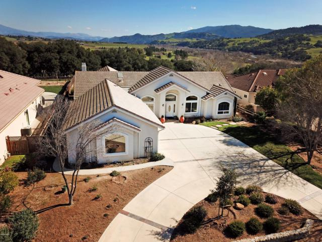 232 Valhalla Drive, Solvang, CA 93463 (MLS #19000385) :: The Epstein Partners