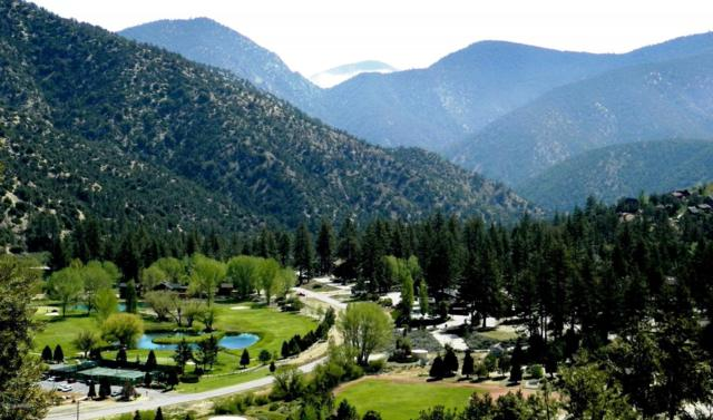 1905 Linden Drive, Pine Mtn Club, CA 93222 (MLS #19000654) :: The Epstein Partners