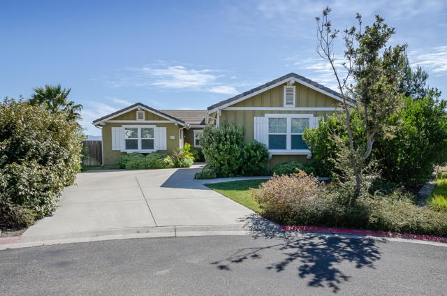 222 Sweetsage Court, Lompoc, CA 93436 (MLS #19001010) :: The Epstein Partners