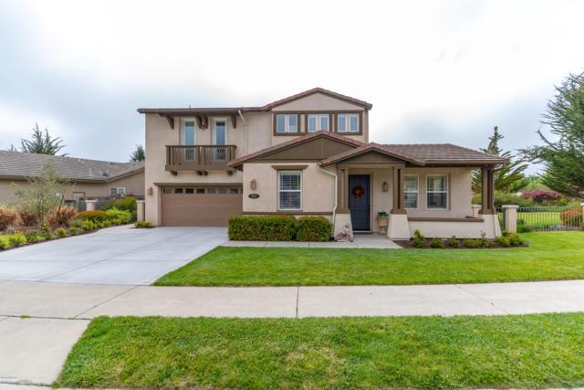 850 Wigeon Way, Arroyo Grande, CA 93420 (MLS #19001066) :: The Epstein Partners