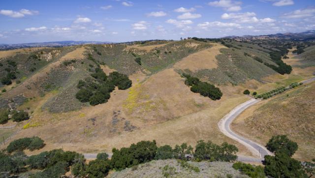 Brinkerhoff Avenue, Santa Ynez, CA 93460 (MLS #19001429) :: The Epstein Partners