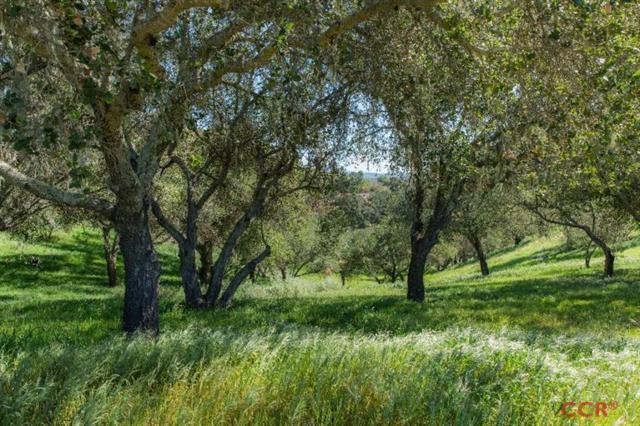 0 E Oak Trail, Santa Ynez, CA 93460 (MLS #196544) :: The Epstein Partners