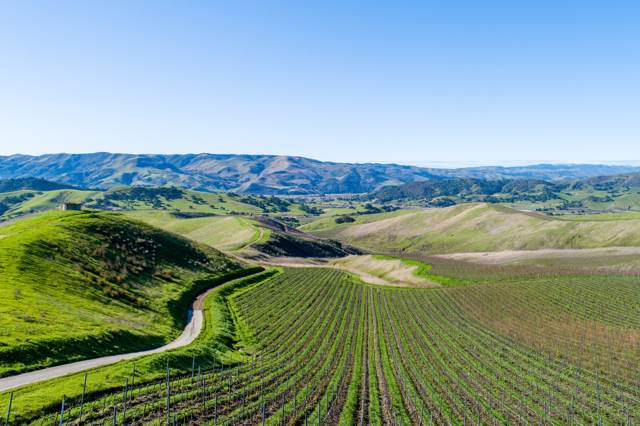 7631 Highway 246, Lompoc, CA 93436 (MLS #20000095) :: The Epstein Partners