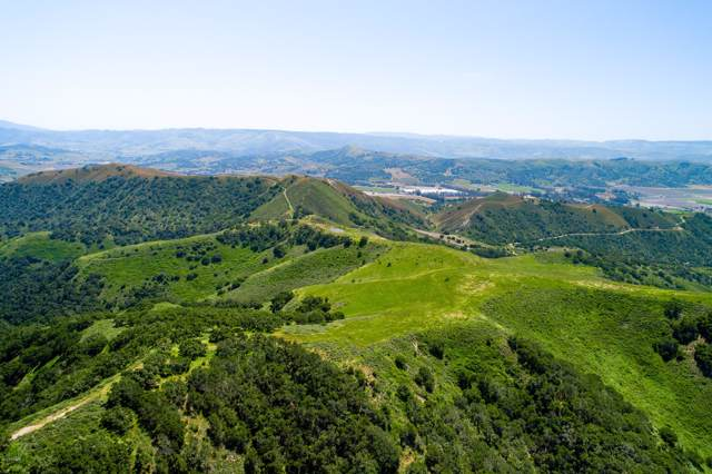 Santa Rita Hills, Lompoc, CA 93436 (MLS #20000141) :: The Epstein Partners