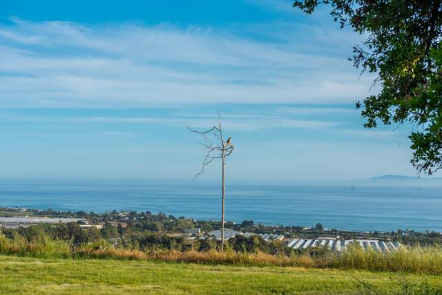 3600 Foothill Rd Road, Carpinteria, CA 93013 (MLS #20002288) :: The Epstein Partners