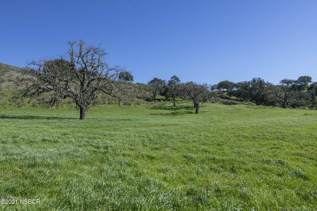 5410 Foxen Canyon Road, Los Olivos, CA 93441 (MLS #21000456) :: The Epstein Partners