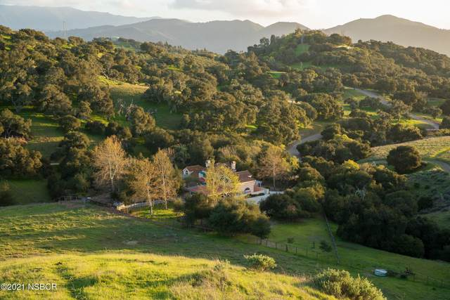 1250 Roble Blanco Road, Solvang, CA 93463 (MLS #21000661) :: The Epstein Partners