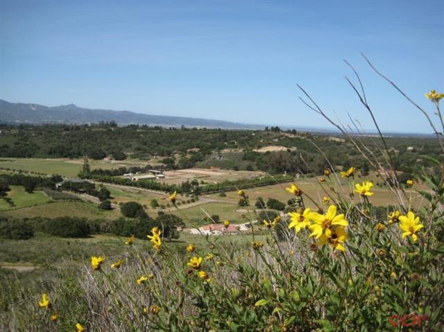 3215 Catalina Road, Lompoc, CA 93436 (MLS #1075845) :: The Epstein Partners