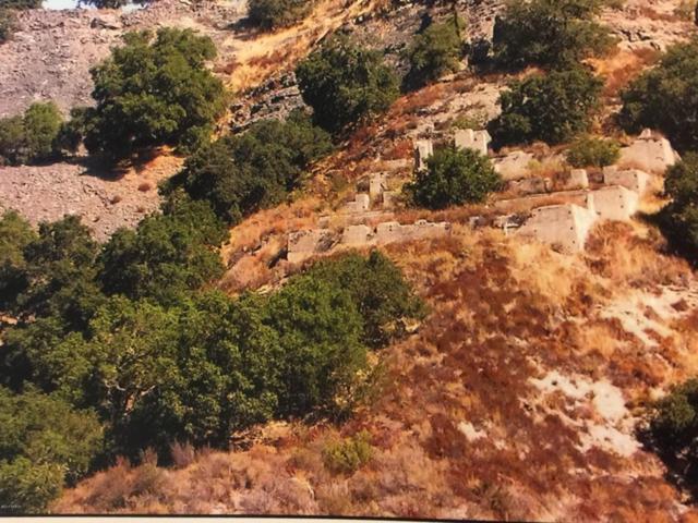 0 Foxen Canyon Road, Santa Maria, CA 93454 (MLS #1701989) :: The Epstein Partners