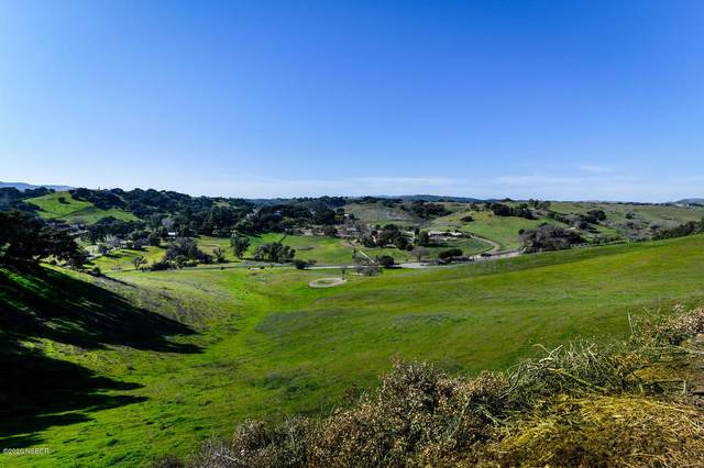 1230 Fredensborg Canyon Road, Solvang, CA 93463 (MLS #20000321) :: The Epstein Partners