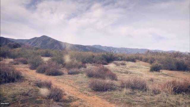 Address Not Published, New Cuyama, CA 93254 (MLS #20000694) :: The Epstein Partners