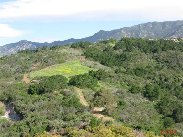 3589 Toro Canyon Road - Photo 1