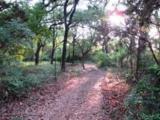 3869 Mambrino Highway - Photo 1