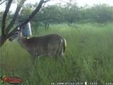 505 Acres Cr 161 - Photo 23