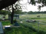 938 County Road 3838 - Photo 25