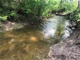 TBD Timber Wolf Trail - Photo 2