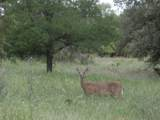39182 Misty Ridge Drive - Photo 21