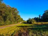 4919 County Road 2305 - Photo 3