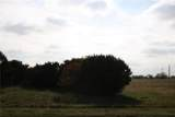 7432 Royal Winchester Drive - Photo 3