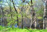 699 Doe Creek Road - Photo 26