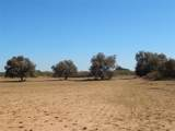 TBD County Rd 443 - Photo 4