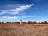 6662 County Road 417 - Photo 31