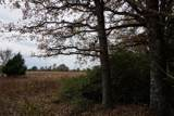 1316b Country Lane - Photo 15