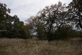 1316b Country Lane - Photo 16