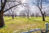 9415 Monticello Drive - Photo 32