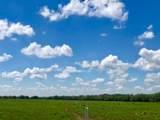 TBD County Road 443 - Photo 9