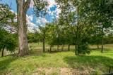 6223 Saddlebrook Way - Photo 12