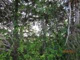 Lot 2 County Rd 4109 - Photo 10