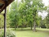 1631 Timber Creek Drive - Photo 32